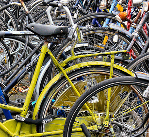 """Approvata risoluzione su bici e mobilità sostenibile. Mumolo: """"Piste ciclabili, stalli e più sicurezza per i ciclisti"""""""