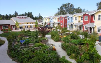 Welfare. Approvata risoluzione che promuove invecchiamento attivo e cohousing