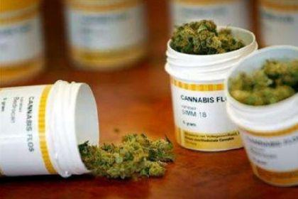 """Farmaci a base di cannabinoidi. Mumolo: """"Renderli effettivamente gratuiti per malati epilessa e altre patologie"""""""