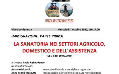 Sanatoria nel settore dell'agricoltura, lavoro domestico e cura alla persona